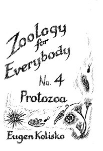 Zoology for Everybody No 4  The Protoza
