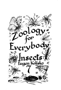 Zoology for Everybody No 7  Insects