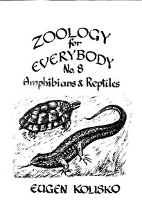 Zoology for Everybody No 8  Amphibians & Reptiles